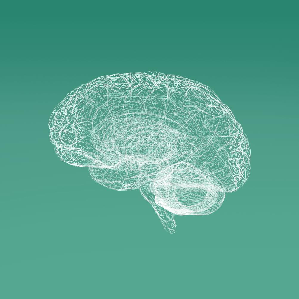 תוכנית בריאות המוח